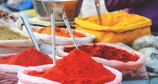 taj mahal tour and cooking classes