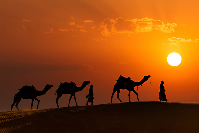 Why Rajasthan Tour Packages are popular in India for Travellers ?
